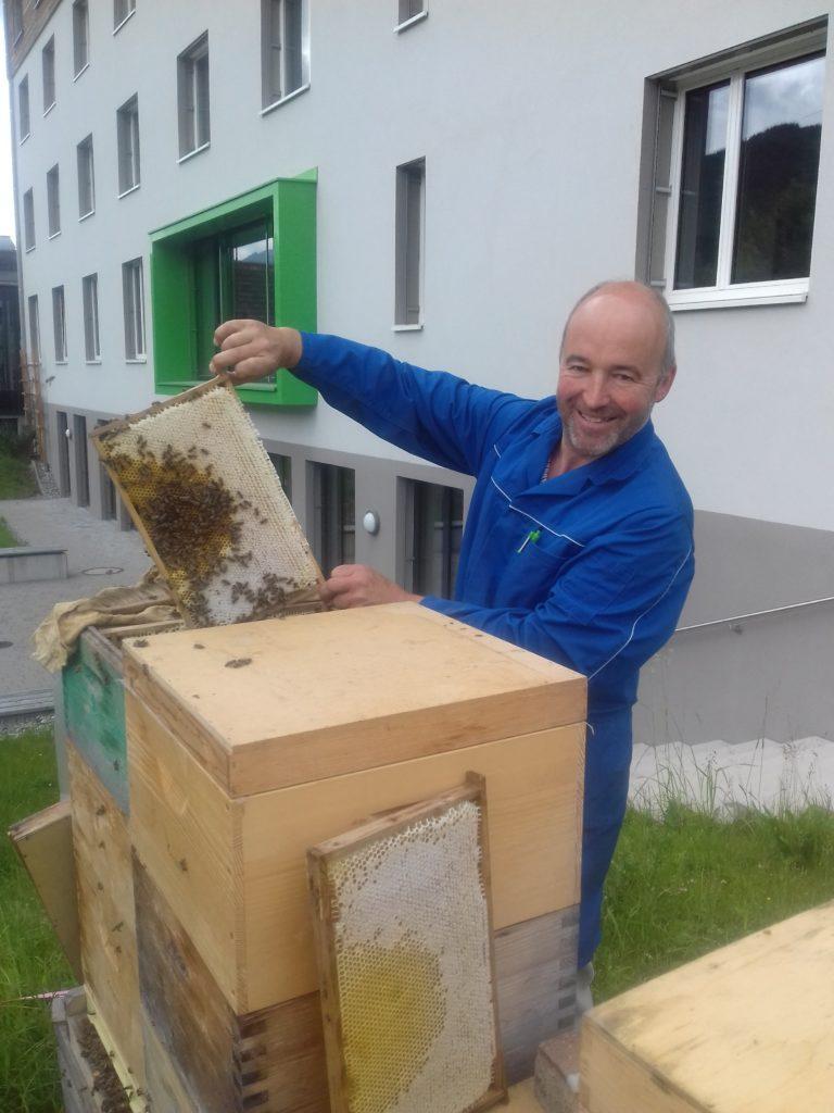 Imker zeigt eine Honigwabe